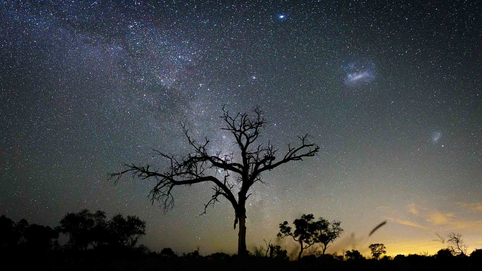 Tanda Tula - milky way above the Timbavati in the Greater Kruger